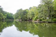 deltaville-creek